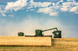ГК «Зерновая Столица», АСУ ТП и ООО «Агротех-Гарантия»