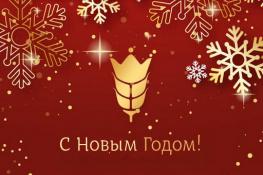 С Новым годом и Рождеством Христовым, друзья!