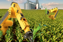 Нужно ли автоматизировать агробизнес?