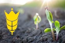 Группа компаний «Зерновая Столица» от всей души поздравляет всех работников сельского хозяйства Украины